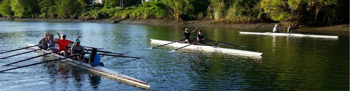 Rowing in Gisborne